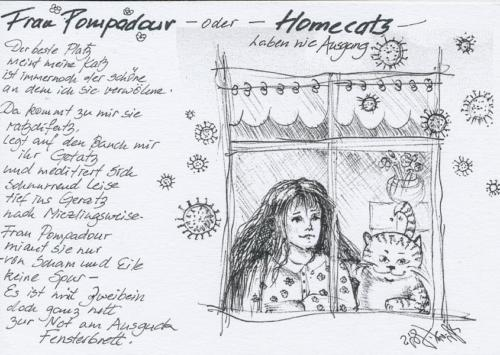 Frau Pompadour oder Homecatz haben nie Ausgang