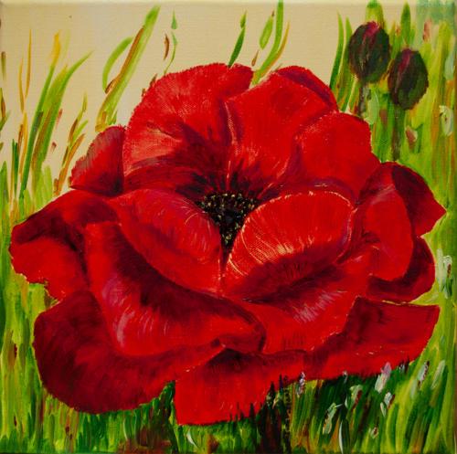 Rose BW blog