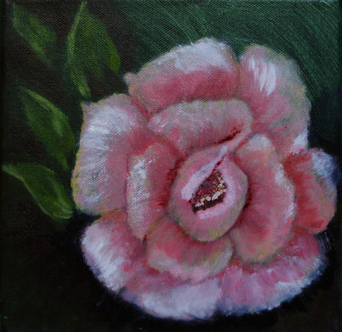 Rose II NW blog