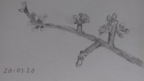 ursula 1 (2)